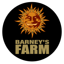 Barneys Farm Seeds - Seed Bank