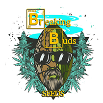 Breaking Buds Seeds - Seed Bank