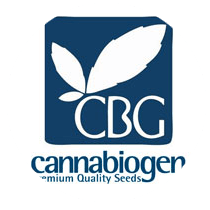 Cannabiogen Seeds