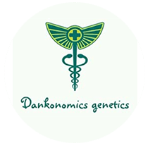 Dankonomics Genetics Seeds