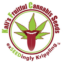 Kalis Fruitful Cannabis KFC Seeds - Seed Bank