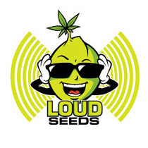 Loud Seeds - Seed Bank