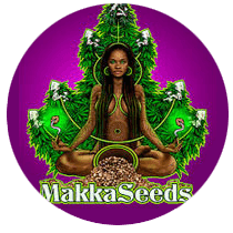 Makka Seeds - Seed Bank