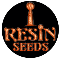 Resin Seeds - Seed Bank