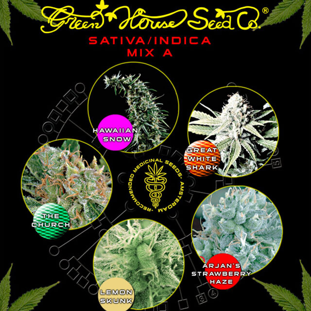 Buy Green House Seeds Sativa / Indica Mix A FEM