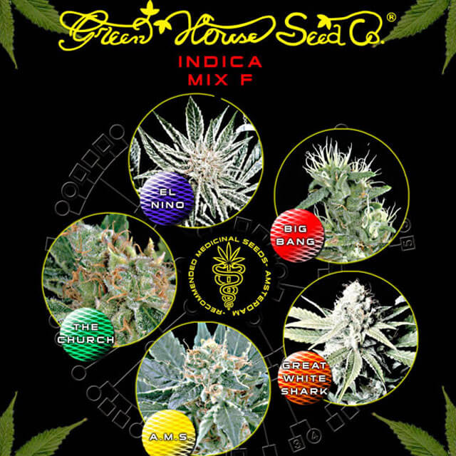 Buy Green House Seeds Sativa / Indica Mix F FEM