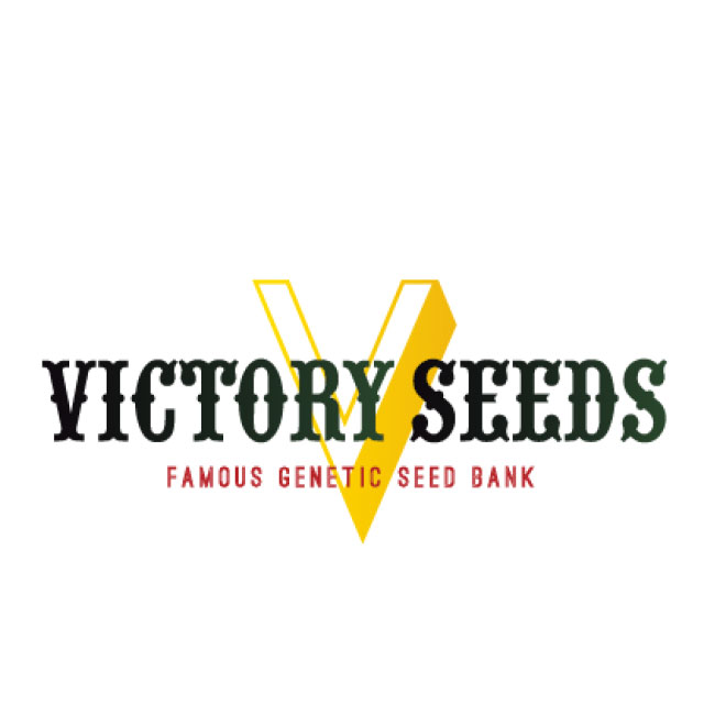 Buy Victory Seeds Feminized Mix FEM