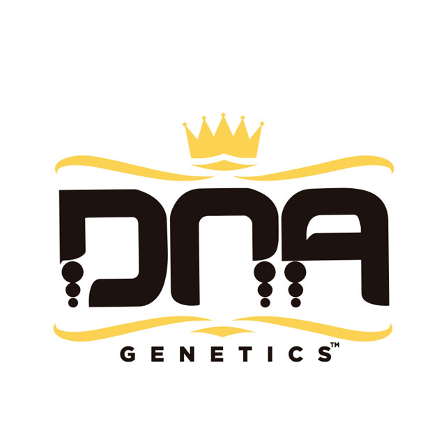 Buy DNA Genetics Seeds Feminized Mix FEM