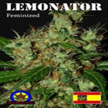 Best Seller - Lemonator