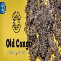 Old Congo